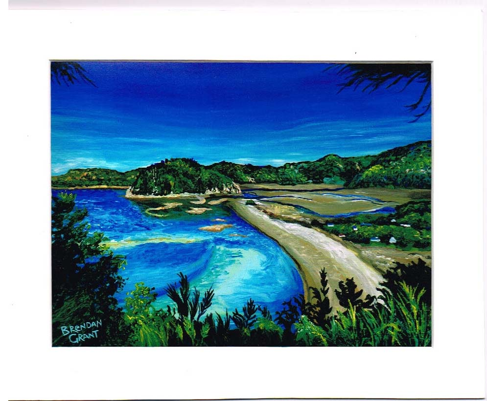 Abel Tasman National Park in 8 by 10 inch mat